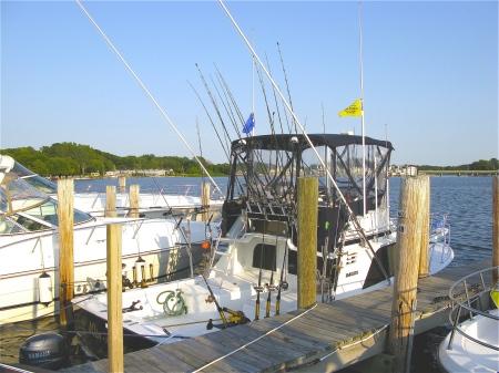 Watercraft Rental Along the Lake Michigan Shoreline - Lake