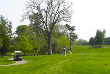 Golf cart and golfer on a course in spring in southwest Michigan